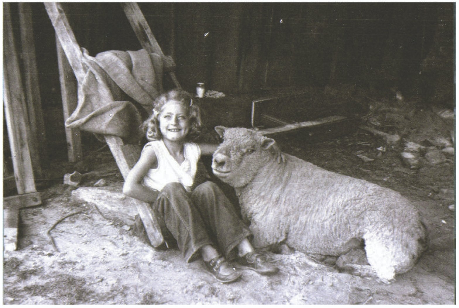 """Carol with Jackie The Ram at our """"Round Mountain Farm"""" in West Brattleboro, Vermont, 1956"""